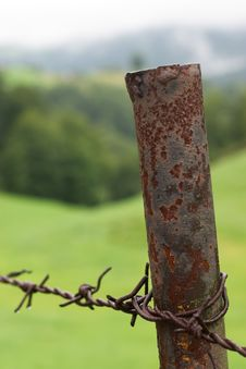 Free Barb Wire Royalty Free Stock Photo - 217395