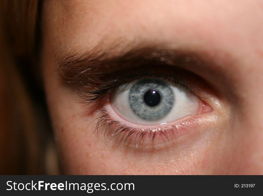 Intense Eagle Eye