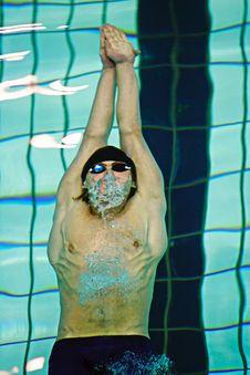 Free Swimmer Stock Photo - 2101880
