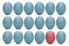 Free Eggs Stock Images - 2104124