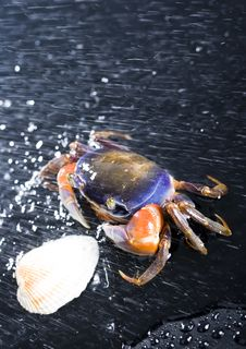 Free Crab In The Rain Royalty Free Stock Images - 2104569