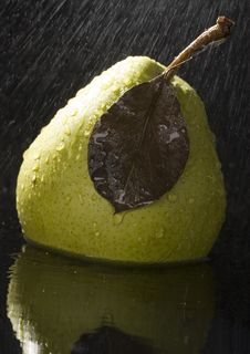 Free Pear In Rain Stock Photo - 2108420