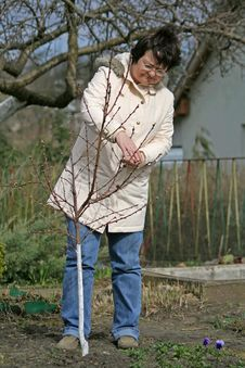 Free Gardener Royalty Free Stock Images - 2108669