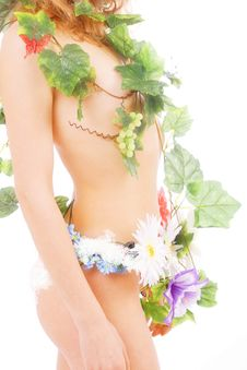Free Spring Body Stock Images - 2109834
