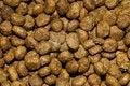 Free Cat Food Stock Photos - 21008843