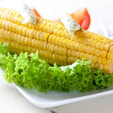 Free Corn Stock Photography - 21000332