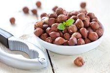 Free Fresh Hazelnuts Stock Image - 21000361