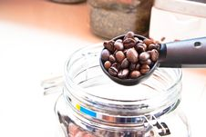Free Coffee Seed On Spoon Stock Photos - 21000993