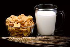 Cornflakes With Milk Royalty Free Stock Photos