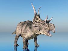 Free Dinosaur Diabloceratops Stock Photography - 21001712