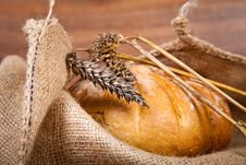 Free Composition Of Fresh Bread Stock Images - 21001984