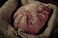 Free Composition Of Fresh Bread Stock Photography - 21002812