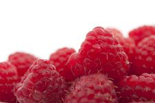 Free Red Raspberries Royalty Free Stock Photos - 21003318