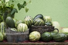 Free Vegetable - Courgettes Stock Photo - 21003360
