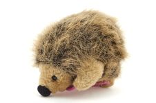 Free A Toy Hedgehog Royalty Free Stock Image - 21006286