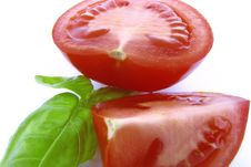 Free Red Tomatoes With Green Basil Royalty Free Stock Images - 21008659