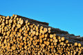 Free Heap Of Timber Logs Stock Photography - 21014312