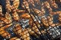 Free Kebabs Stock Photos - 21017363