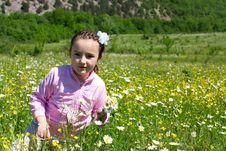 Free Little Girl In A Meadow Stock Photography - 21011002
