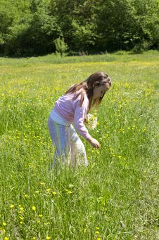 Free Little Girl In A Meadow Stock Photo - 21011020