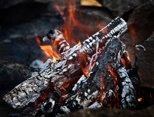 Free Bonfire. Hot Coals Royalty Free Stock Photography - 21013517