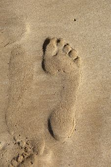 Free Man Foot Print On A Sand Beach Royalty Free Stock Images - 21017819