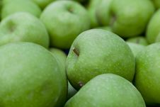 Free Green Apples Royalty Free Stock Photo - 21018245