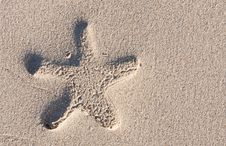 Free Starfish Print On The Beach Royalty Free Stock Images - 21018509