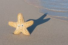 Free Smiling Starfish With Victory Sign On The Beach Royalty Free Stock Images - 21018609