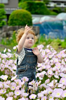 Free Little Boy Stock Photography - 21019892