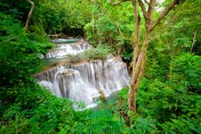 Free Waterfall Royalty Free Stock Photography - 21020007