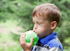 Free Boy Inflates  Balloon In Park Royalty Free Stock Photo - 21020135
