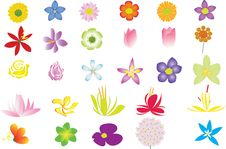 Illustration Of Flower Collection Royalty Free Stock Photos