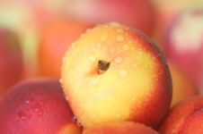 Free Peaches Stock Photography - 21021312