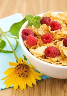Free Corn Flakes With Raspberries Stock Photography - 21021892