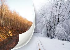 Change Of Seasons Royalty Free Stock Images