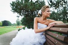 Free Beautiful Bride In White Dress Stock Photography - 21023352