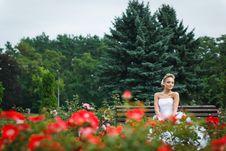 Free Beautiful Bride In White Dress Stock Image - 21023371