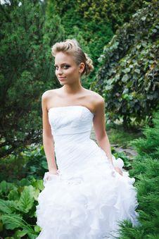 Free Beautiful Bride In White Dress Stock Photo - 21023460
