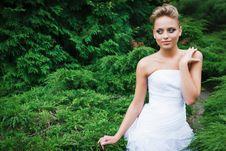 Free Beautiful Bride In White Dress Stock Photo - 21023580