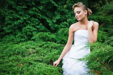 Free Beautiful Bride In White Dress Royalty Free Stock Images - 21023629