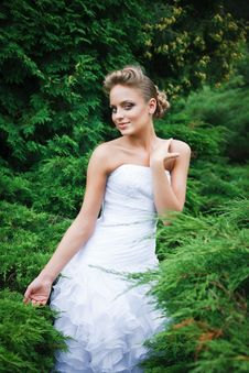 Free Beautiful Bride In White Dress Stock Photography - 21023672