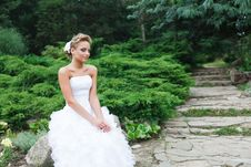 Free Beautiful Bride In White Dress Royalty Free Stock Images - 21023779
