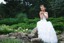Free Beautiful Bride In White Dress Royalty Free Stock Image - 21023866