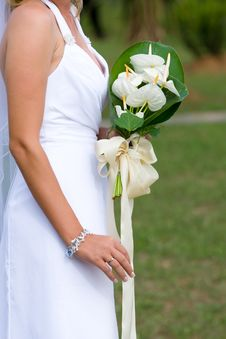 Free Bride Holding Bouquet Royalty Free Stock Photography - 21024457