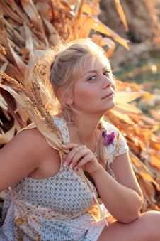 Free Young Woman In Corn Haystack Stock Photos - 21026063