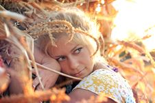 Free Young Woman In Corn Haystack Royalty Free Stock Photo - 21026075