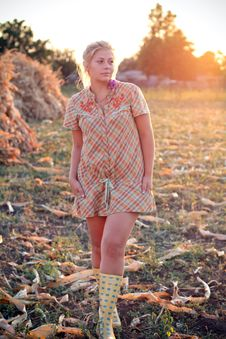 Free Young Woman In Corn Field Royalty Free Stock Photo - 21026095