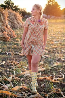 Free Young Woman In Corn Field Stock Images - 21026114