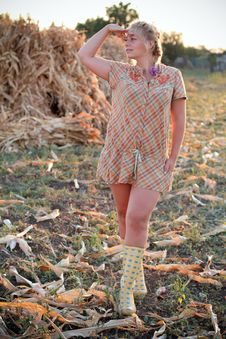Free Young Woman In Corn Field Stock Photos - 21026123